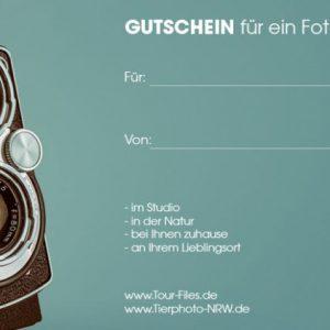 Gutschein-60-a6-lang-1200x423